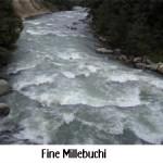 fine_millebuchi